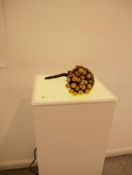 Robyn Sweeney, The Golden Horn: Bulls, Bees & pollen balls