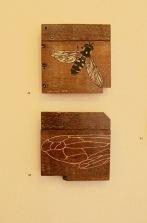 Kathy Cornwall, Cuckoo Bee (Above) Wing (Below)