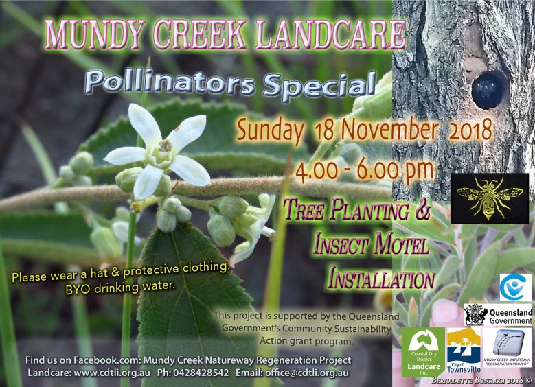 2018.11.POLLINATORS special Planting flyer small